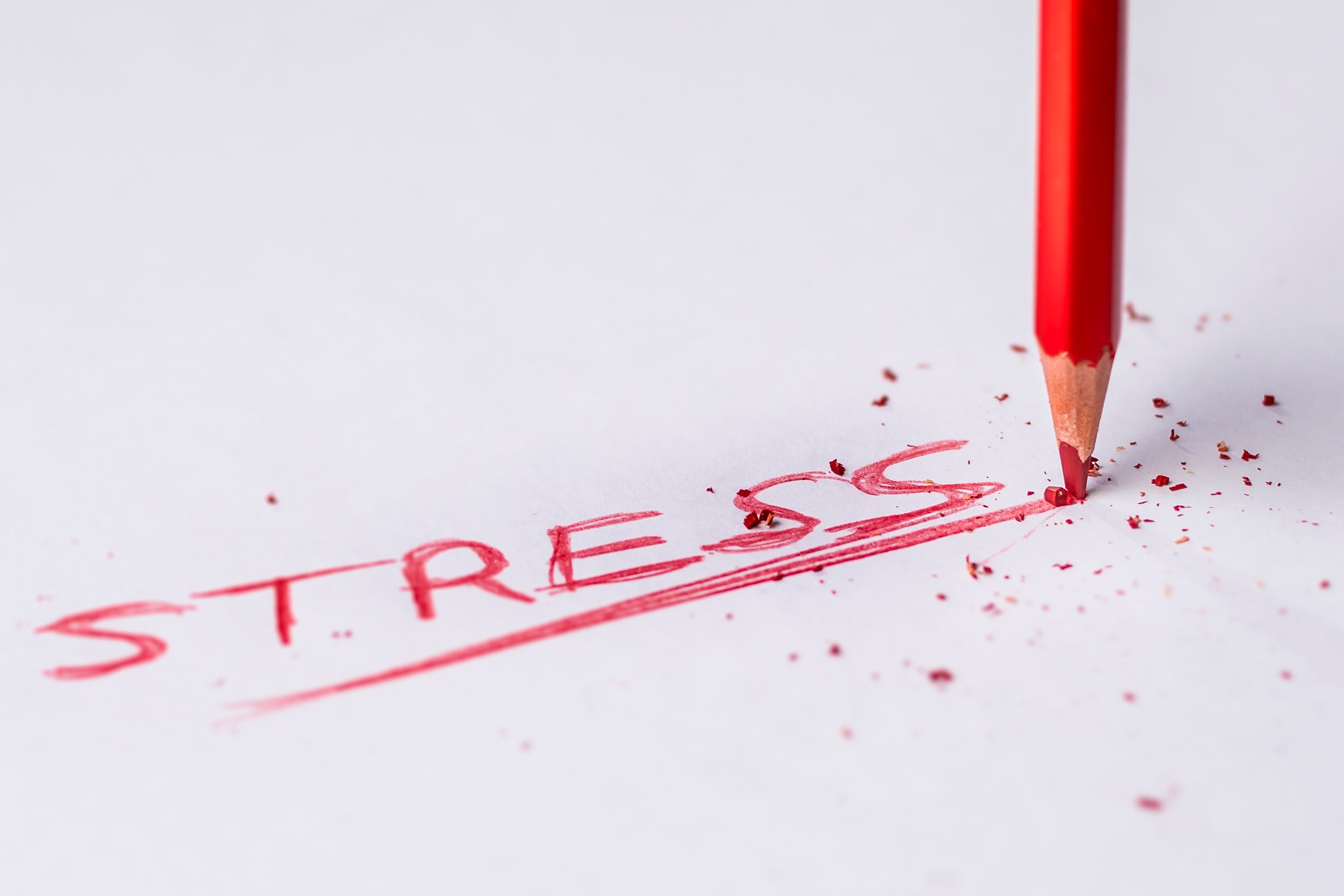 Stress Management – A Personal Story by Project Manager Rob Rinaldo at March