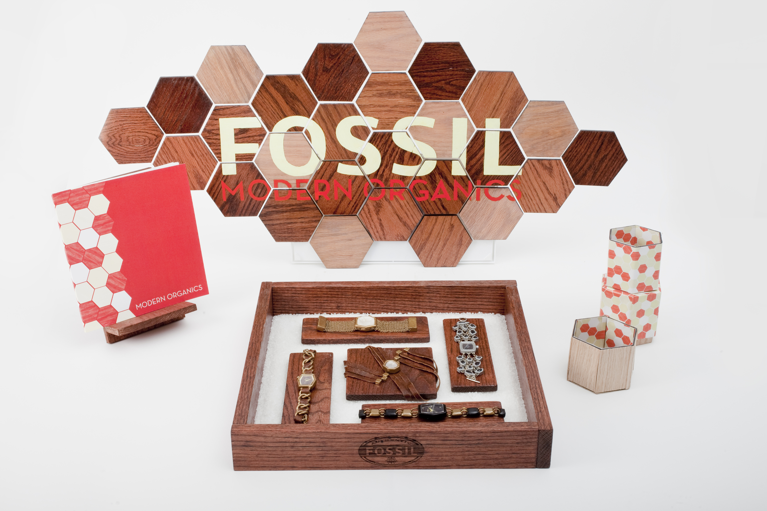 FossilProject_04_DB.jpg