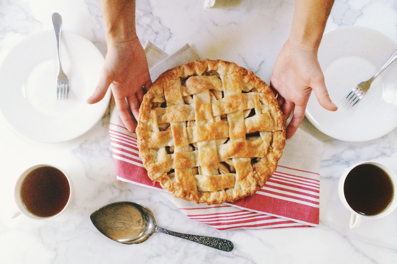 Tiny Buffalo Apple Pie - Workbook
