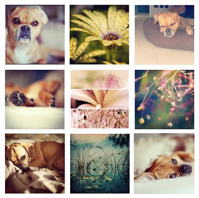 instagram_topost.jpg