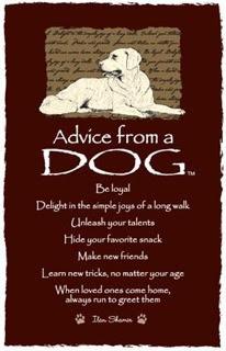 Advice-from-a-Dog1.jpg
