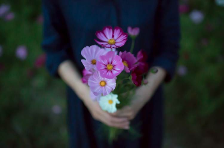 flickr_5_3.png
