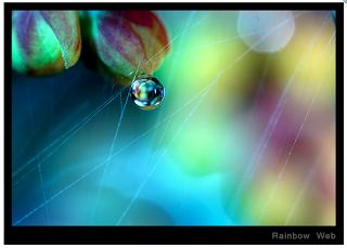 Screen+shot+2012-04-10+at+2.01.36+PM.png