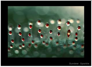 Screen+shot+2012-04-10+at+2.01.42+PM.png