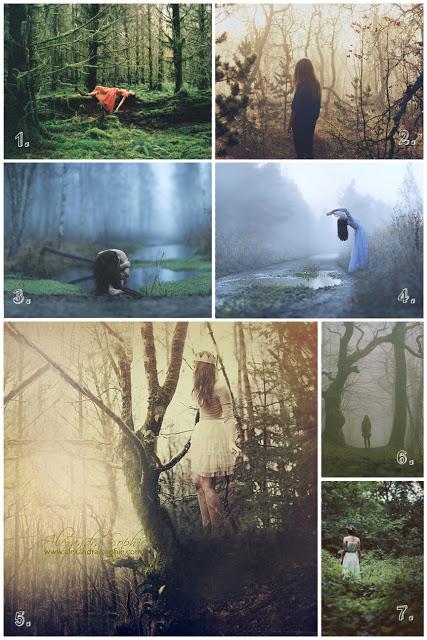woods_flat.jpg