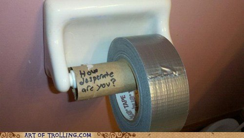 funny-pictures-auto-toilet-paper-471127.jpeg