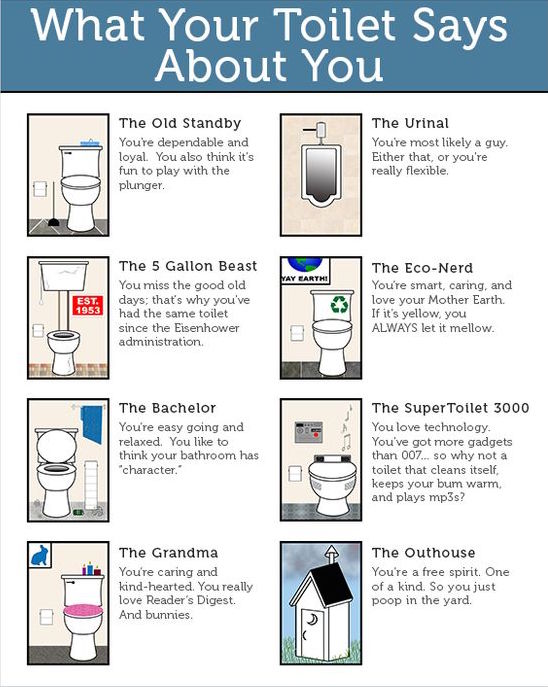 What Your Toilet Says About You