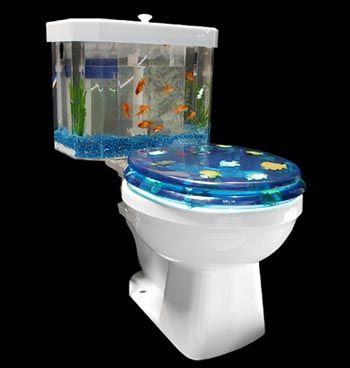 Fish Tank Toilet.jpg