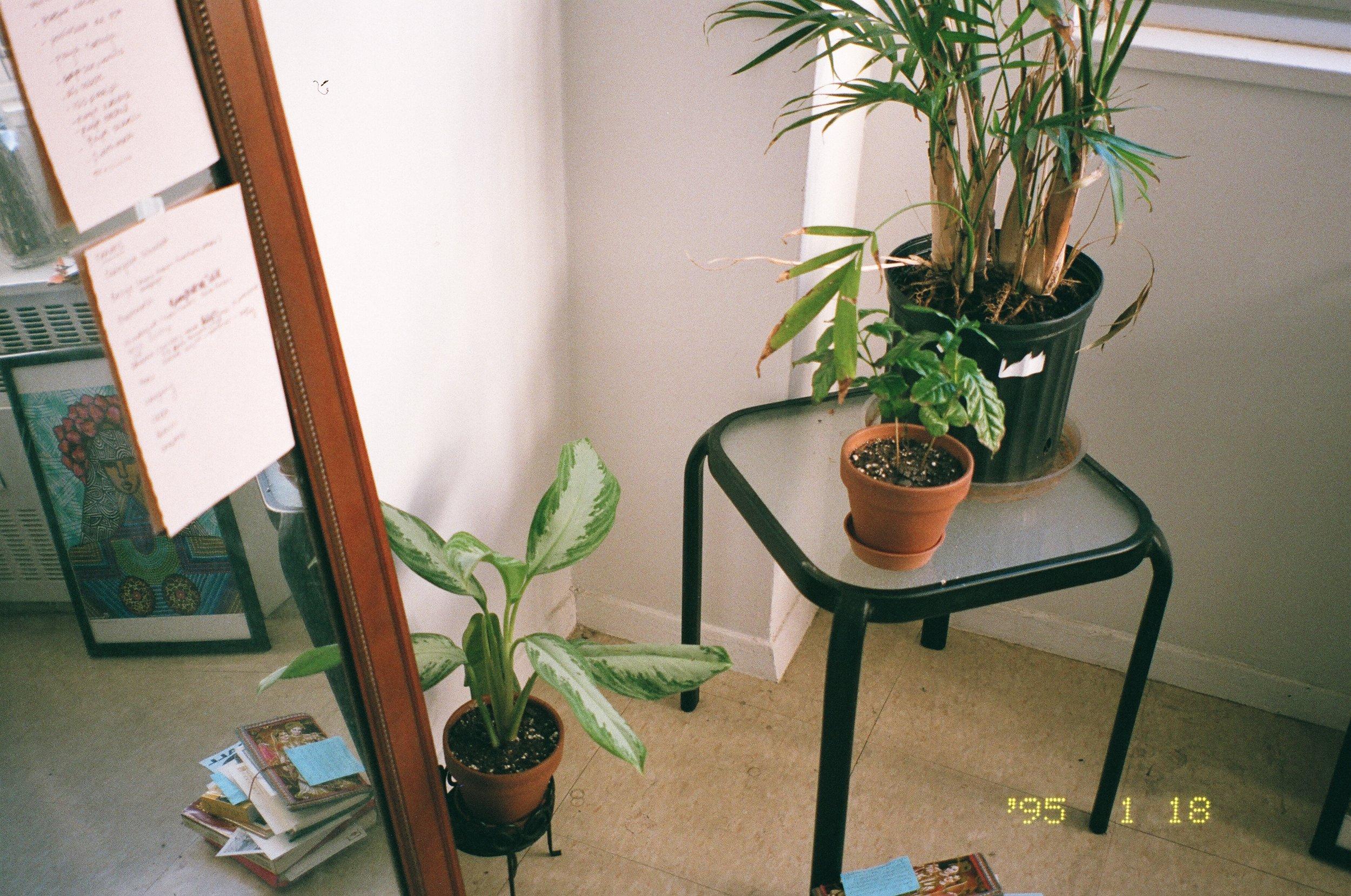 Image of bedroom, taken by Aliyah