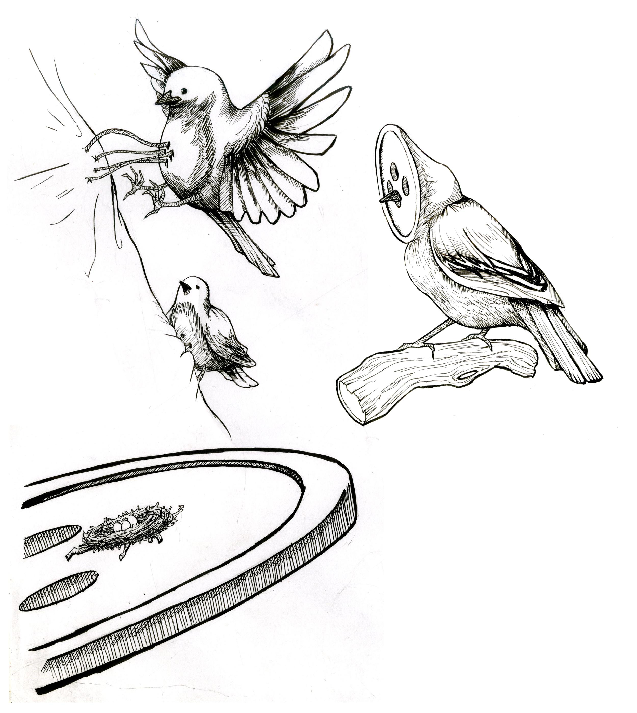 buttonbirds.png