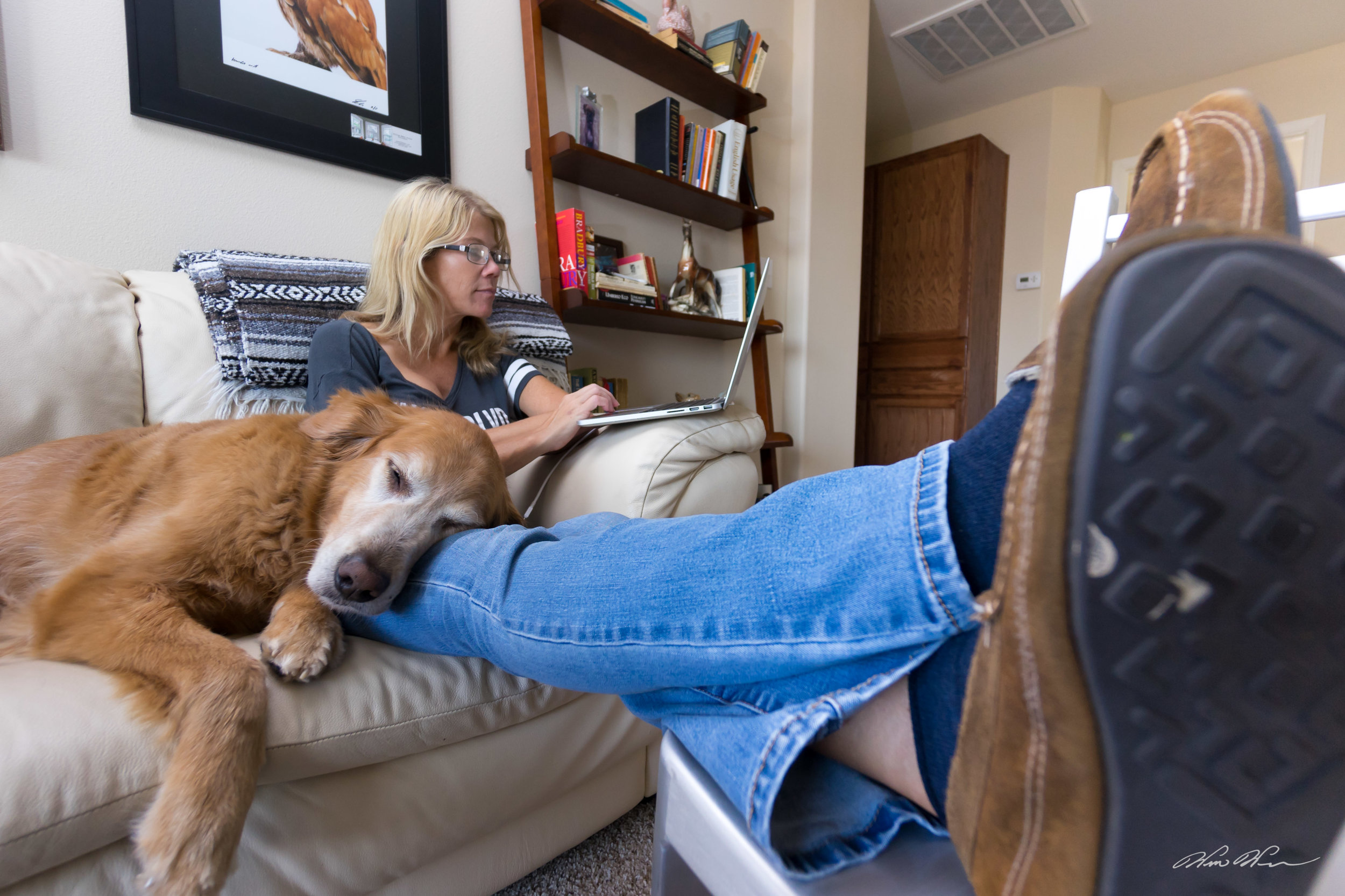 Simon the Golden Retriever naps while Tara the wife shops