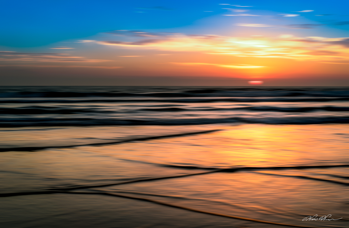 """Silk Purse"" ~ Imperial Beach, CA"