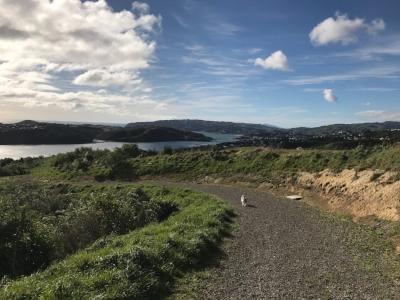 local New Zealand trail Aotea Porirua