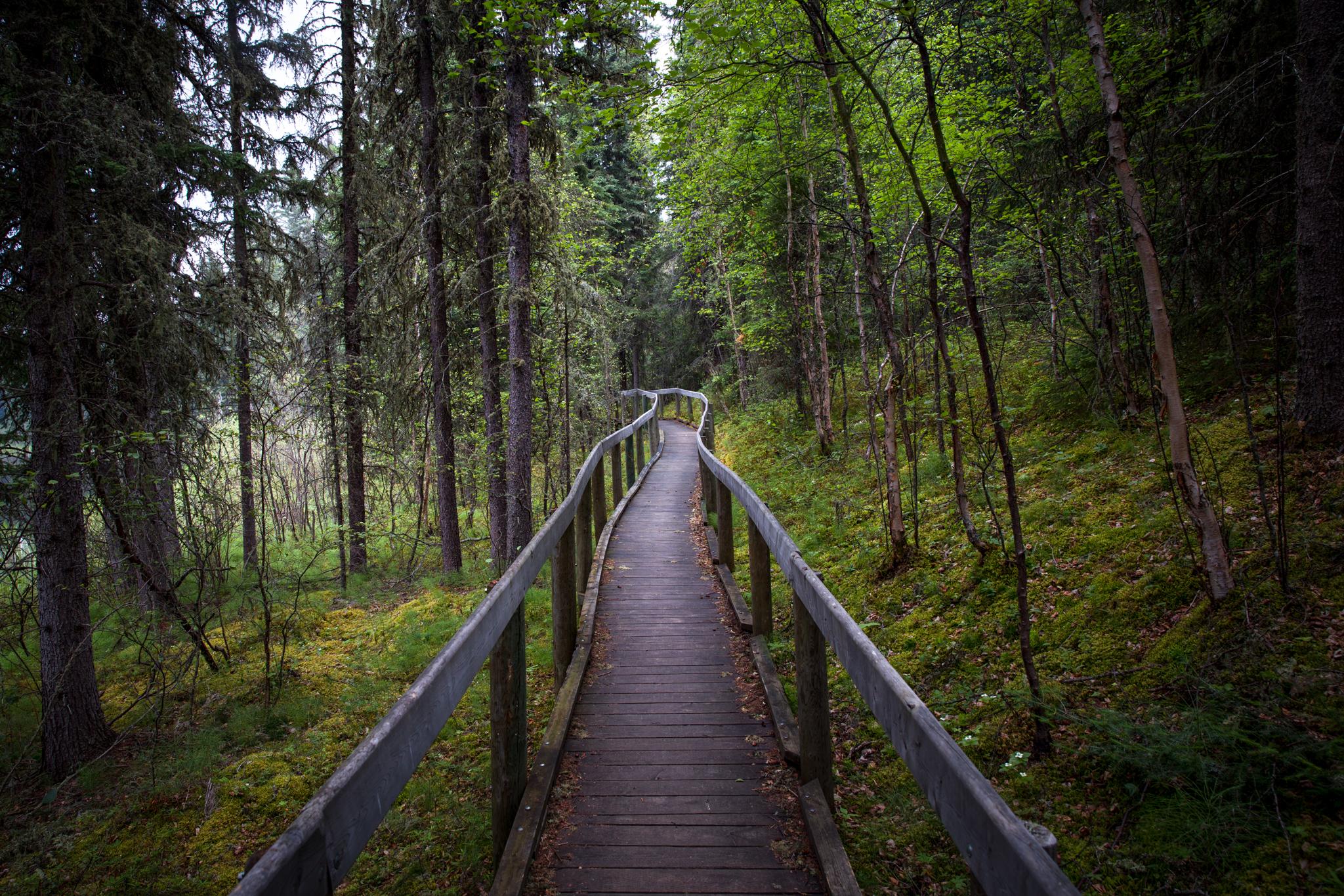Waskesiu River trail, Prince Albert National Park