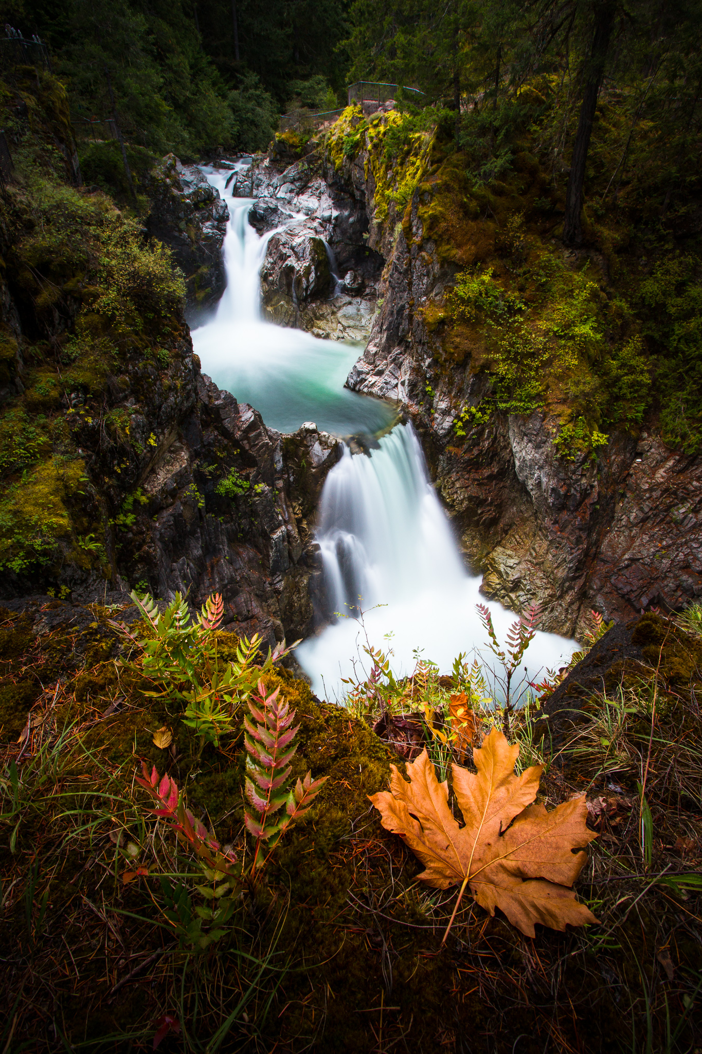LITTLE QUALICUM FALLS - BC-1.jpg