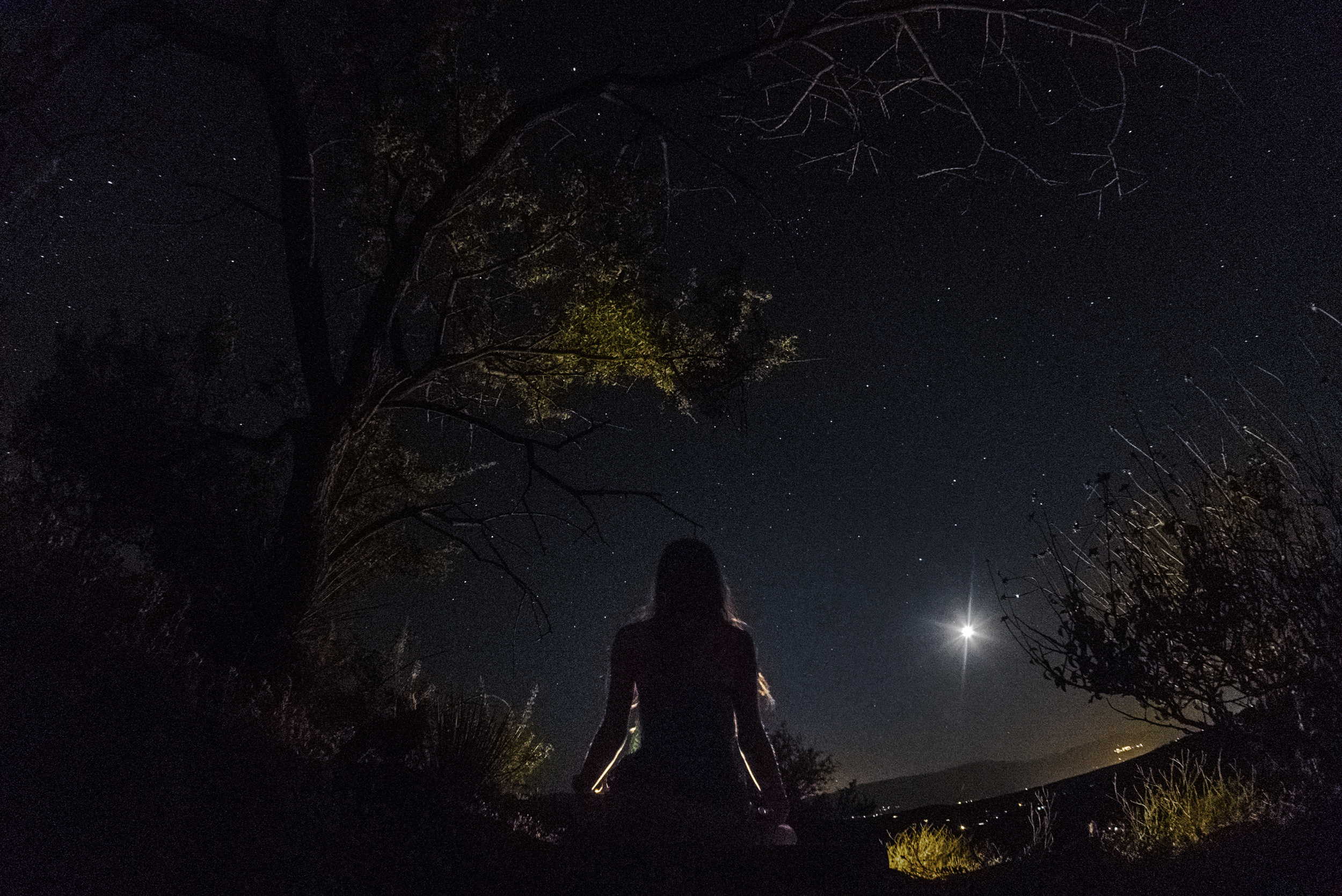Night Meditation2.jpg