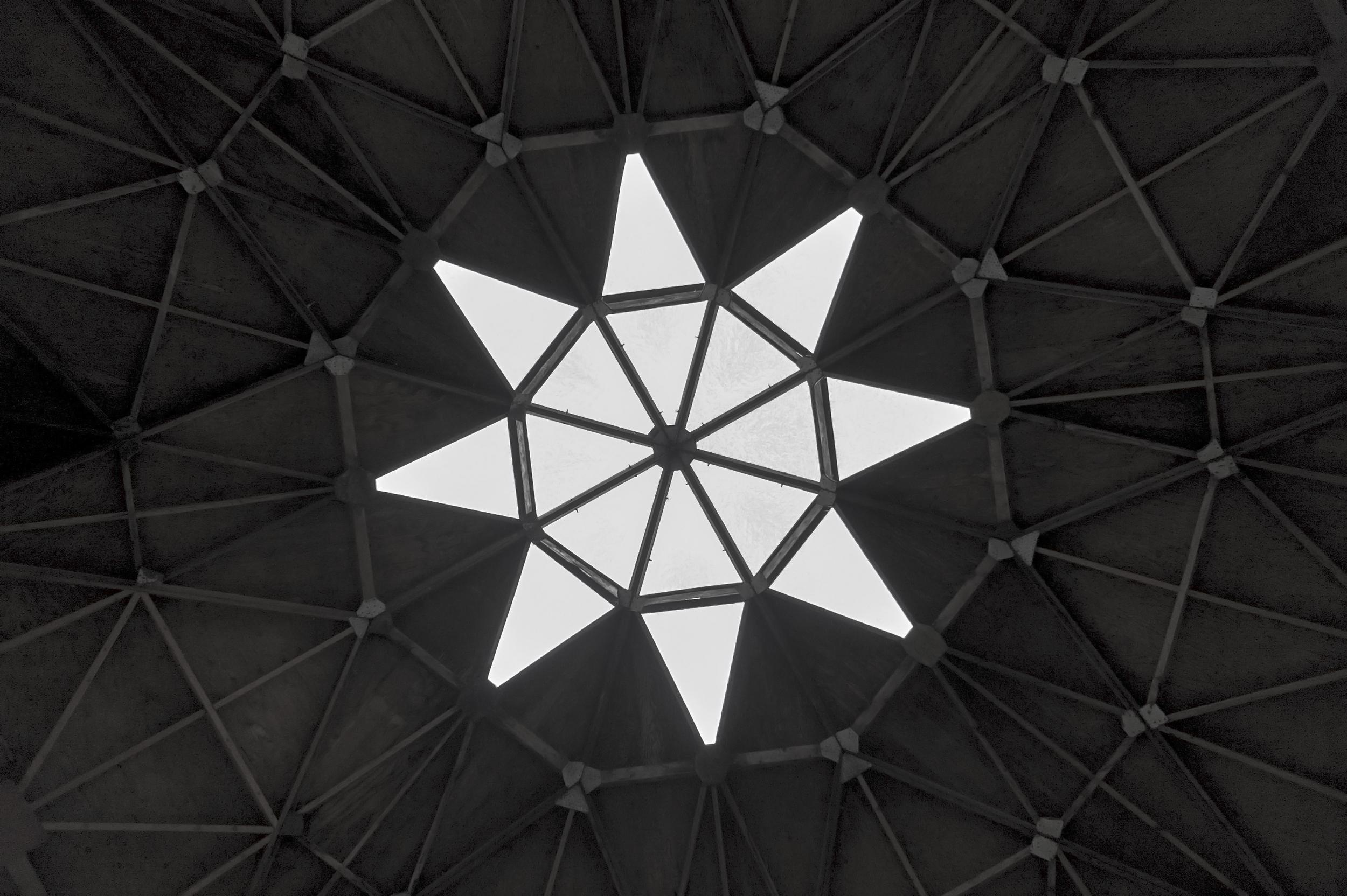 Geometric Lama.jpg