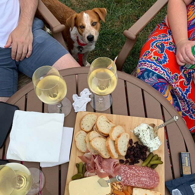 The usual wine and cheese but with a cute little addition 💕 . . . #ollie #pupper #winery