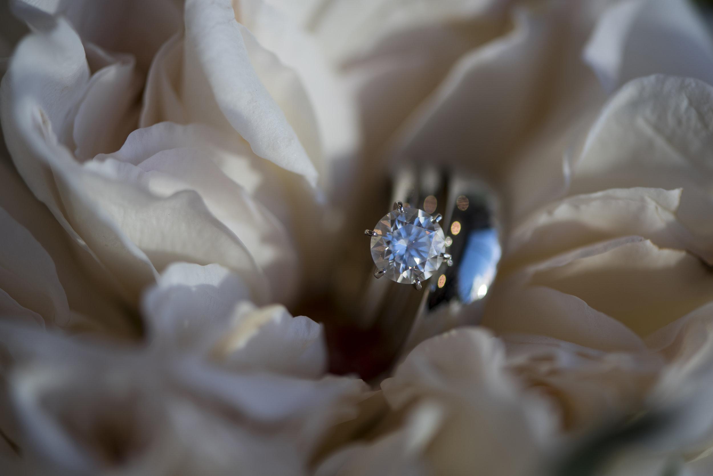 bishopandlind_wedding28.jpg