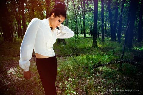 Woodland Romance Daniel Finley