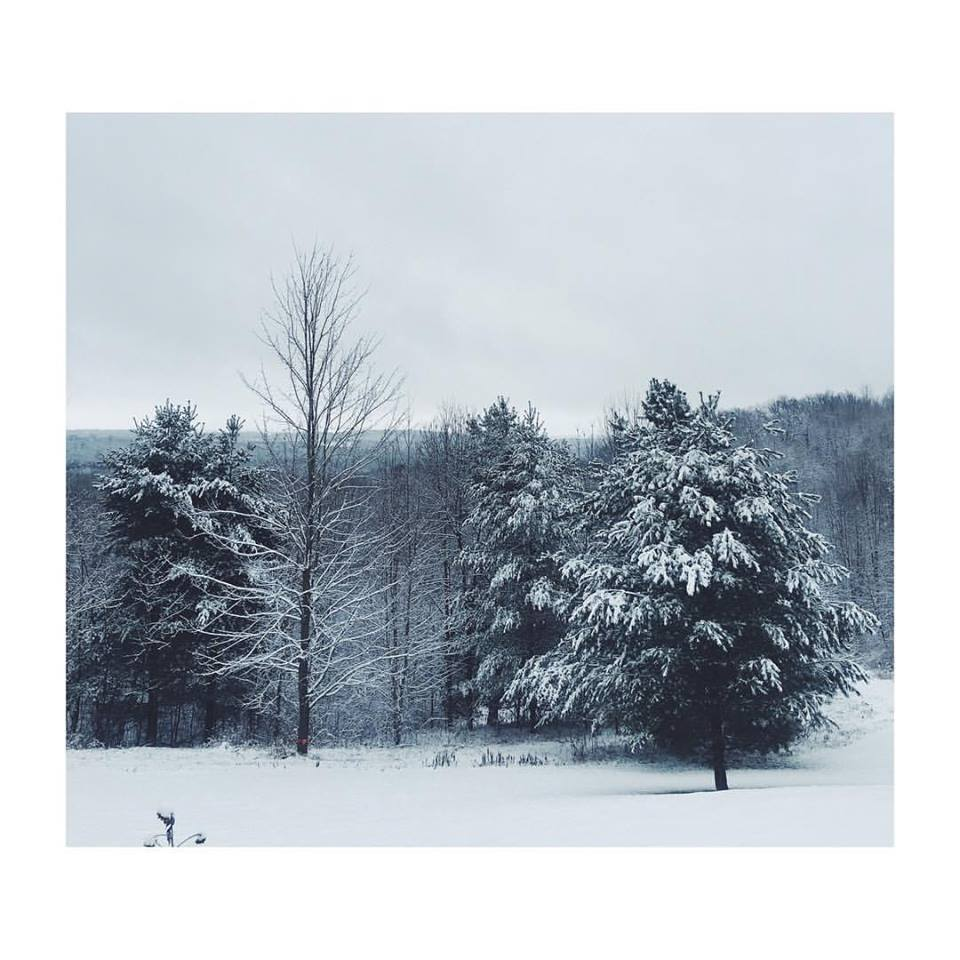 Winter's Wisdom: Honoring The Cycles