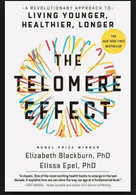The Telomere Effect Book Review