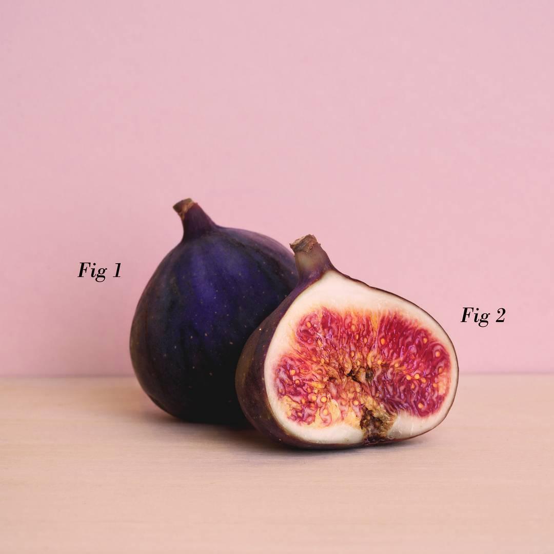 Fig-Insta.jpg