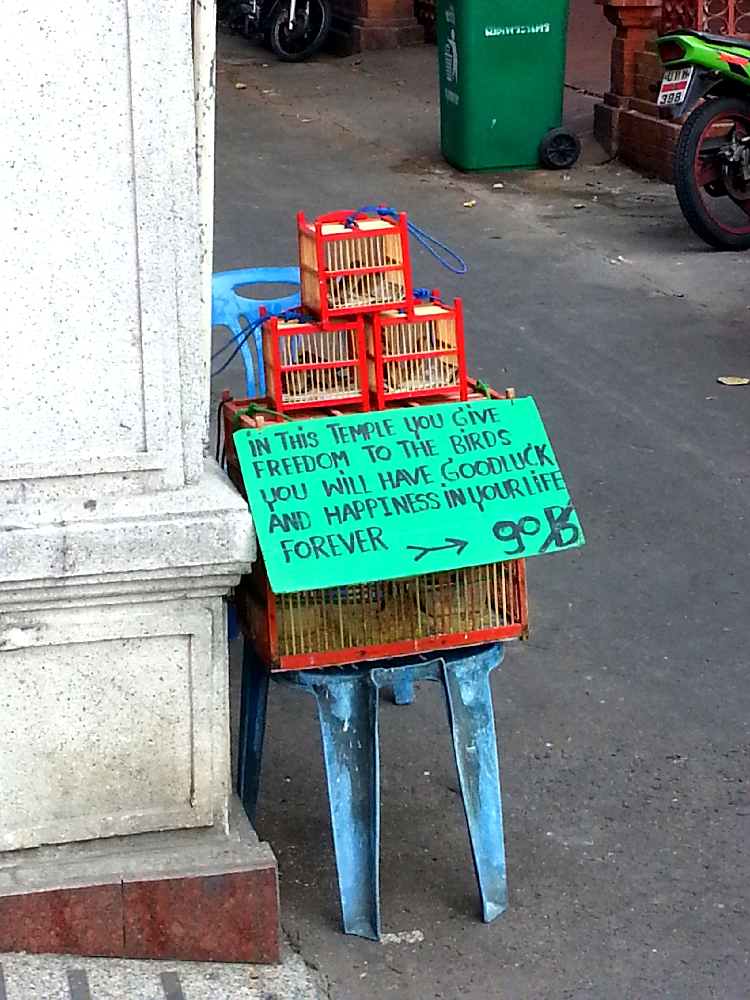 Bangkok Buddhist Temple Birds Freedom Thailand.jpg