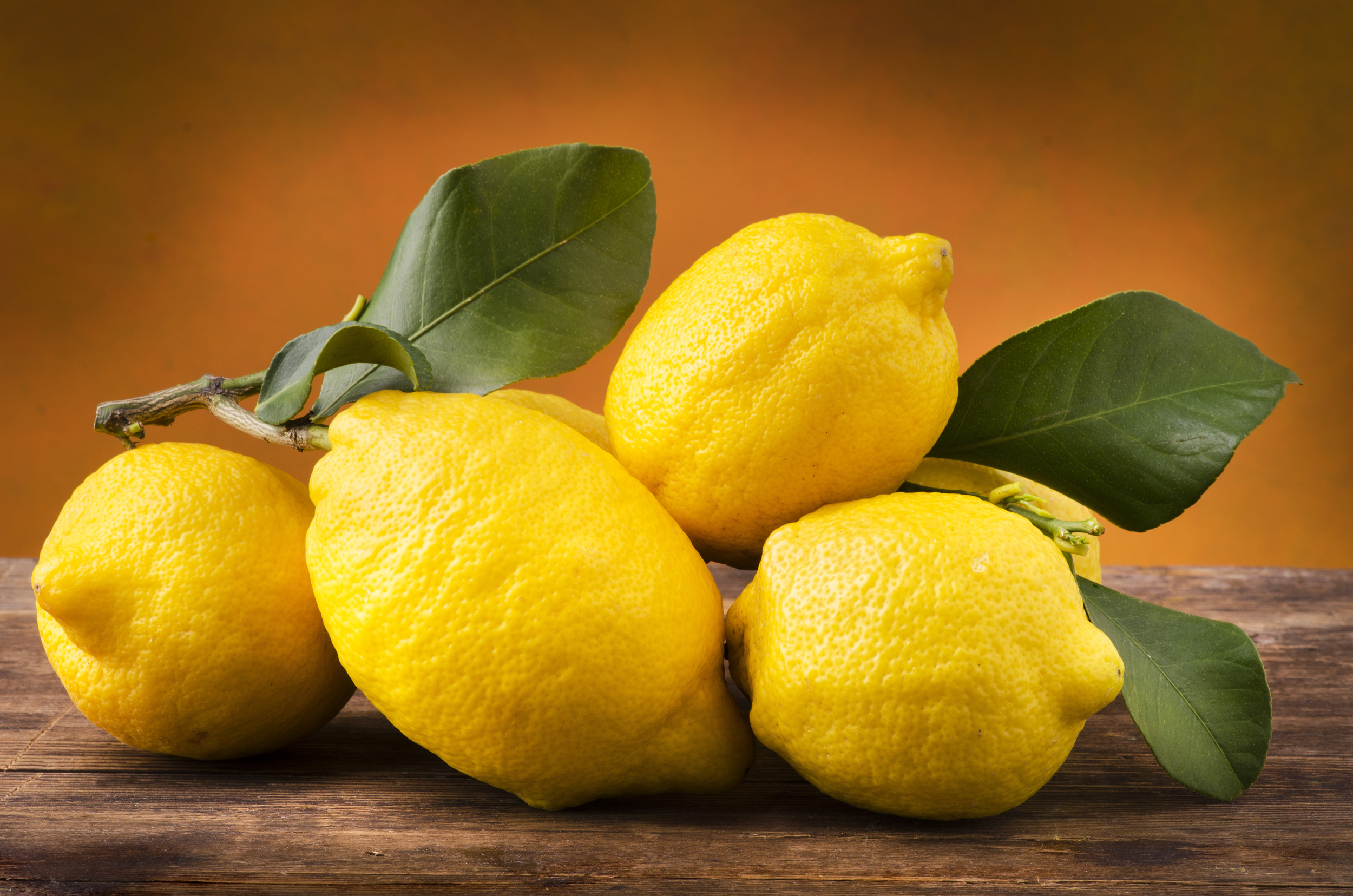 yogarei_lemons