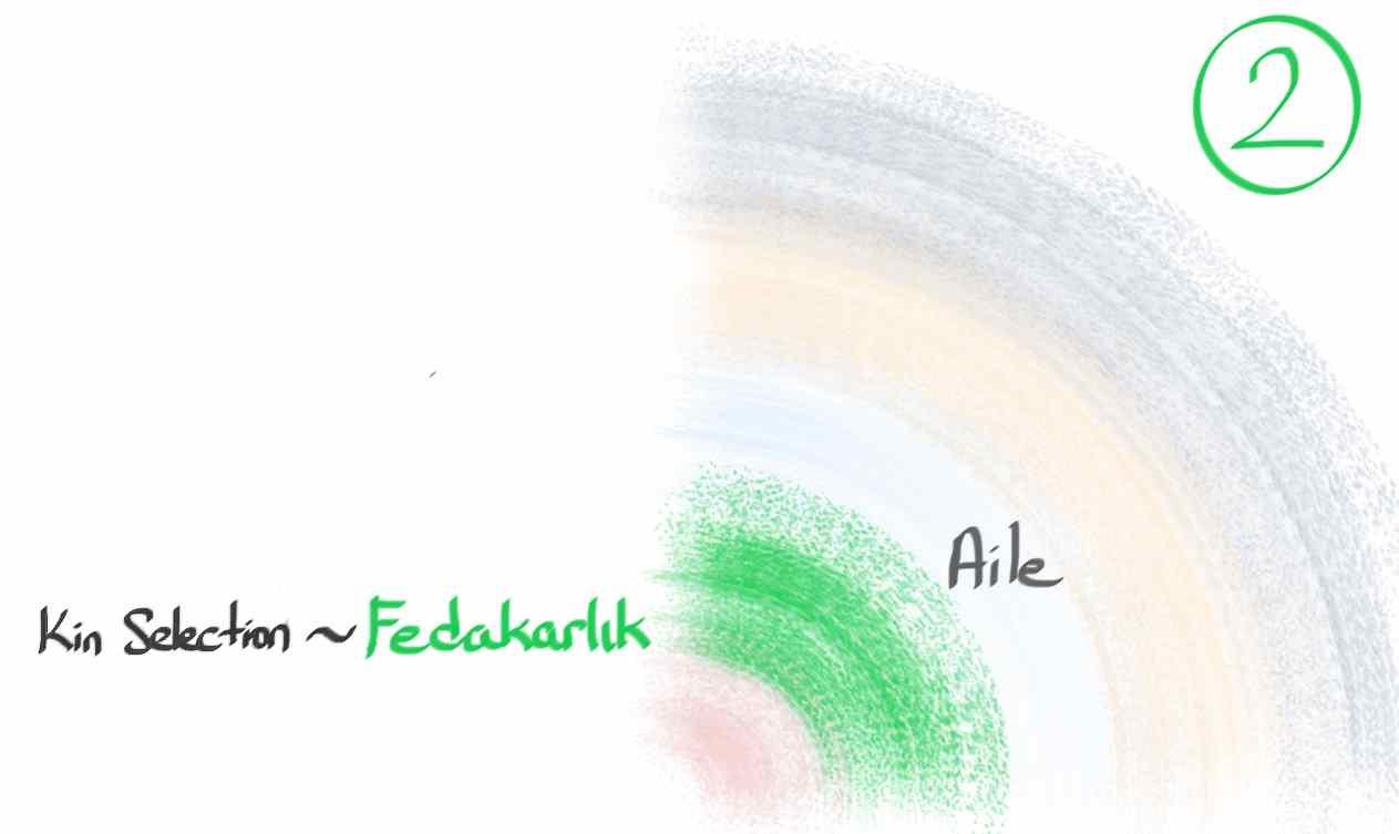 2_Altruism_Cover.jpg
