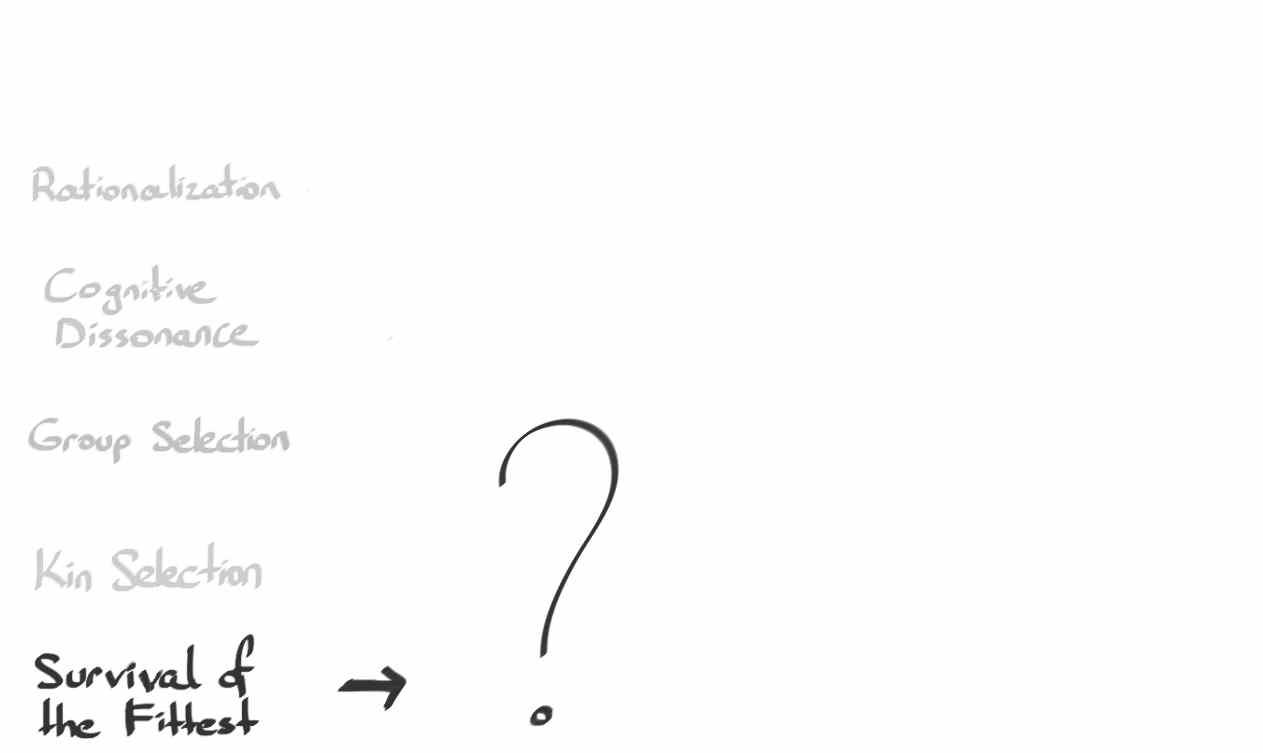 1_Bencillik1.jpg
