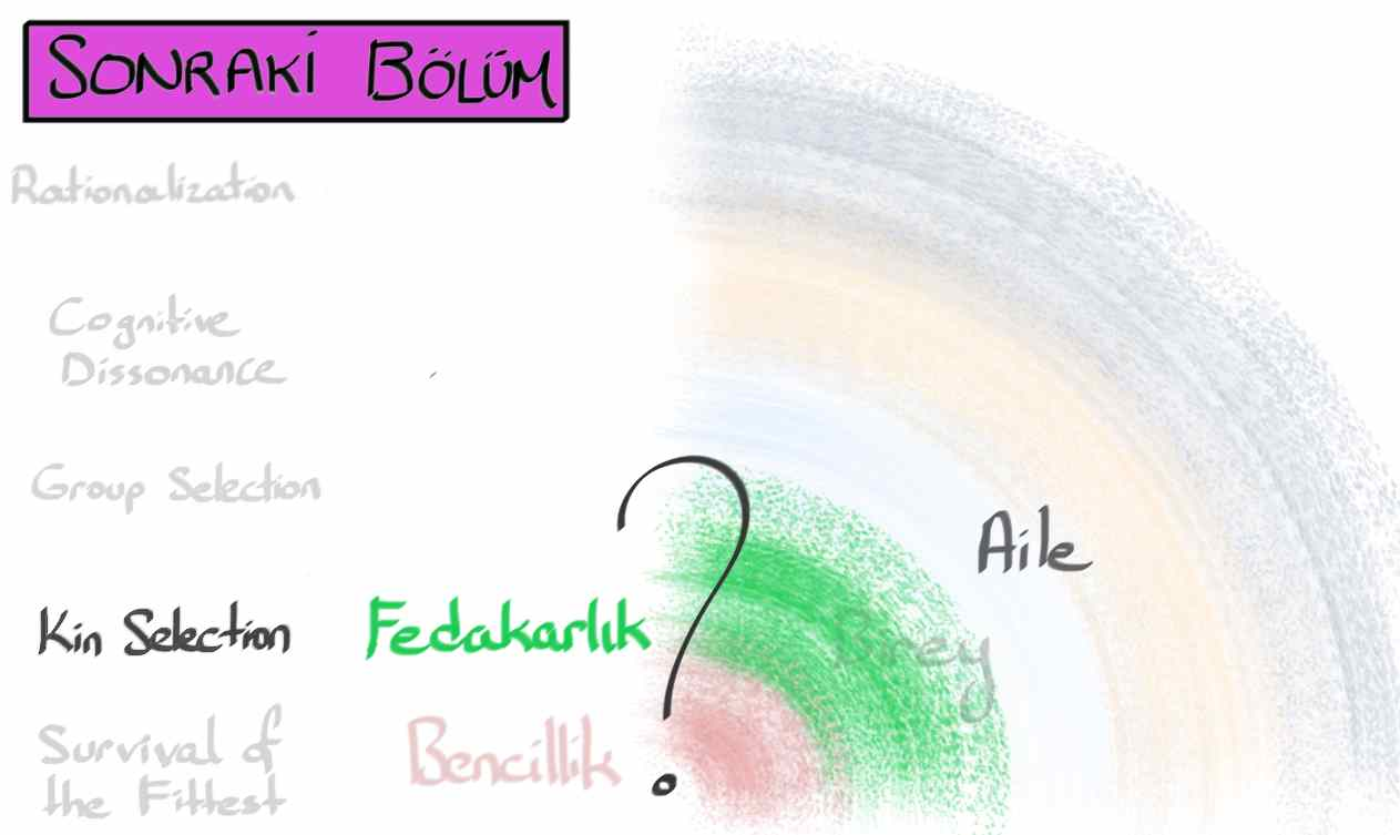 1_Bencillik15.jpg