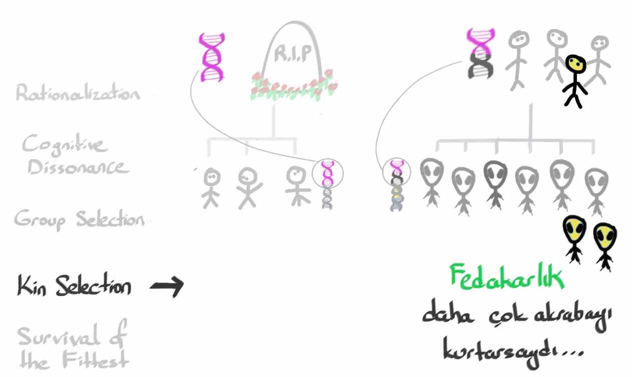 2_Altruism15.jpg