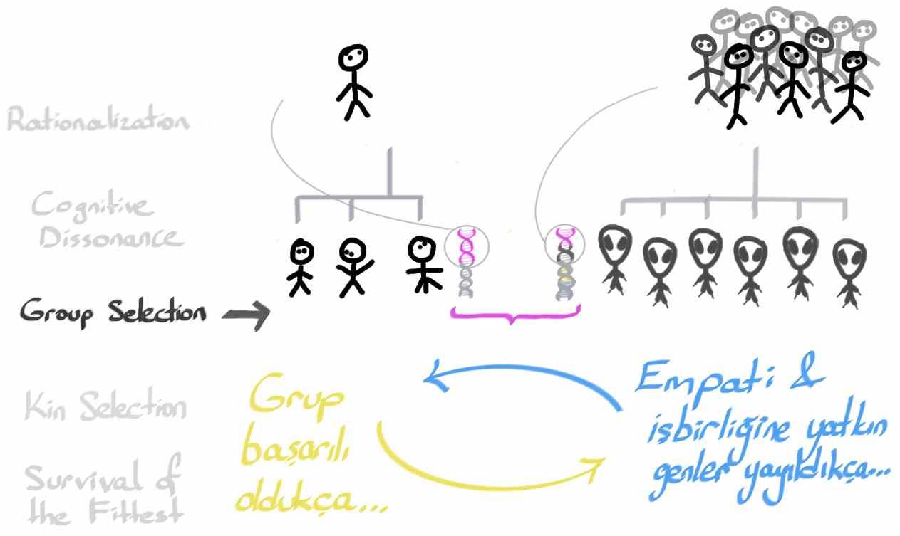3_GroupSelection14.jpg