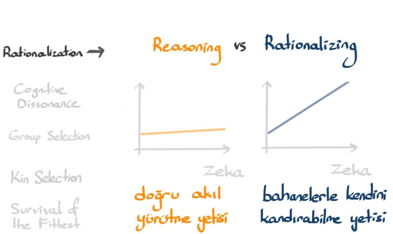 5_Rationalization21.jpg