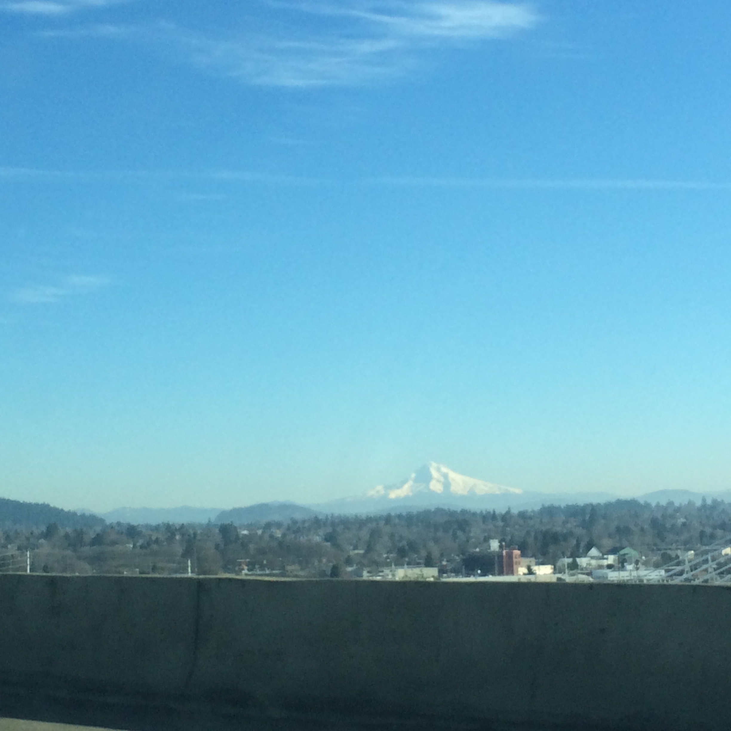This was my first time seeing Mount Hood and even from a distance it is absolutely beautiful.