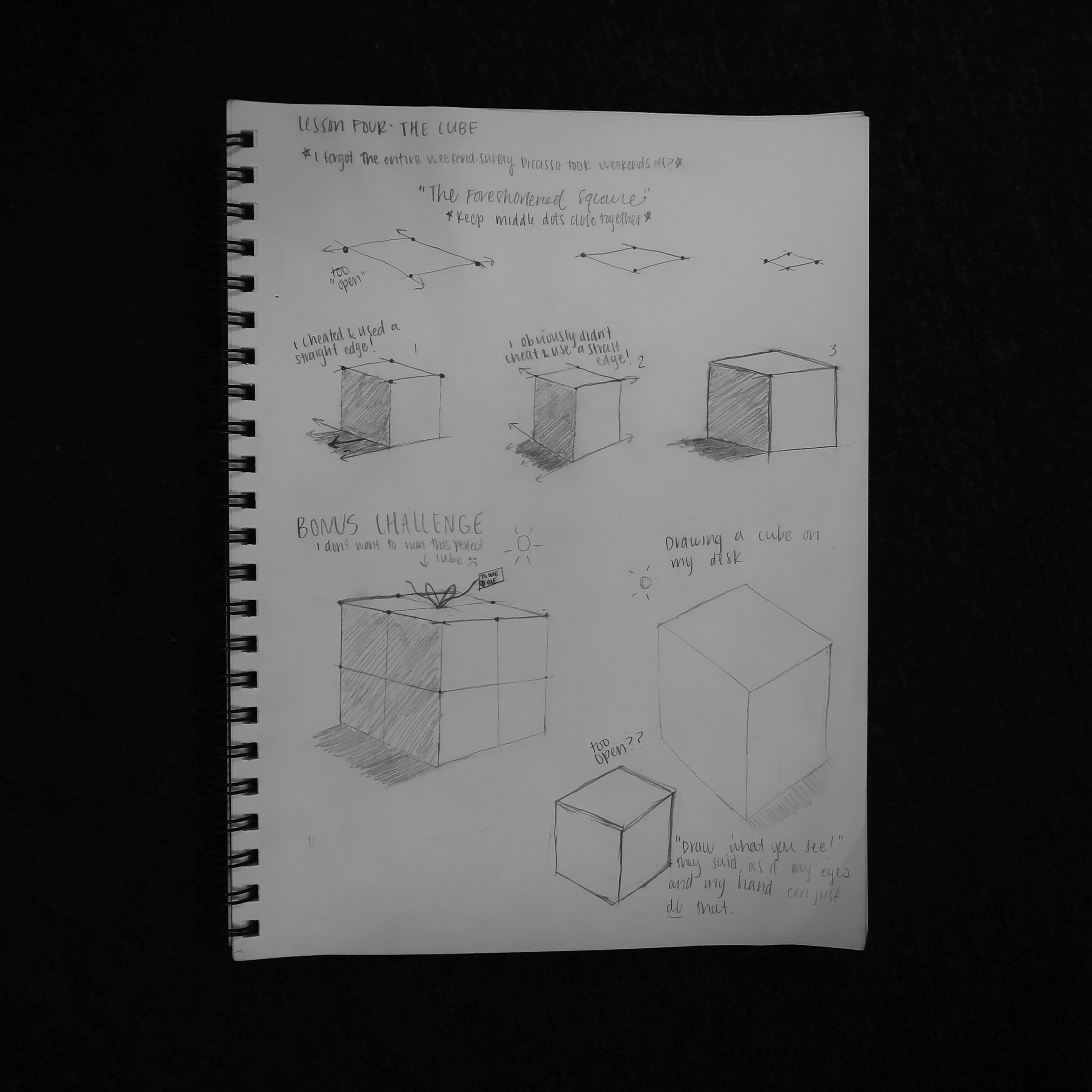 I loved drawing cubes. I didn't understand foreshortening. Still don't!
