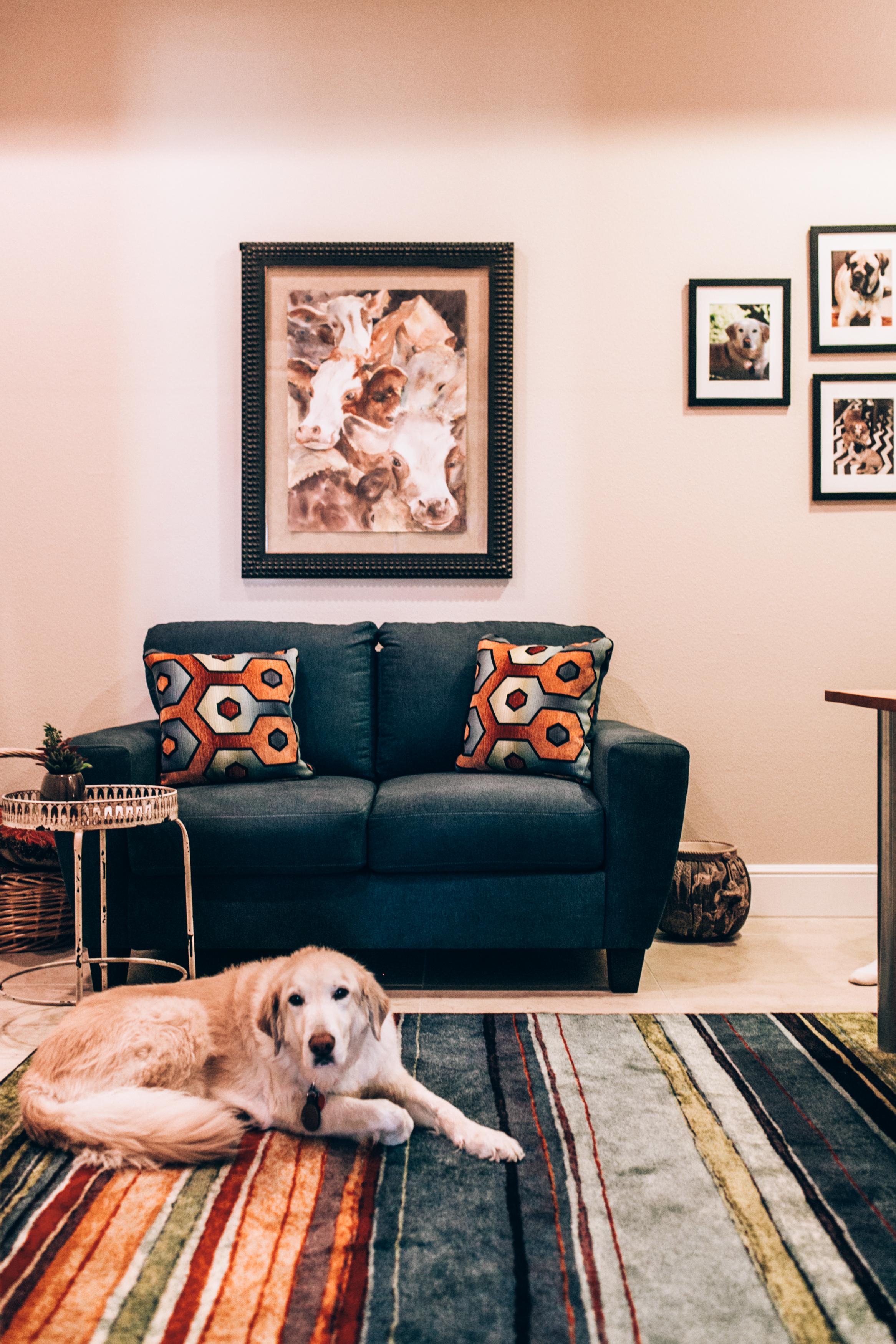 interior-design-home-decorating-346.jpg