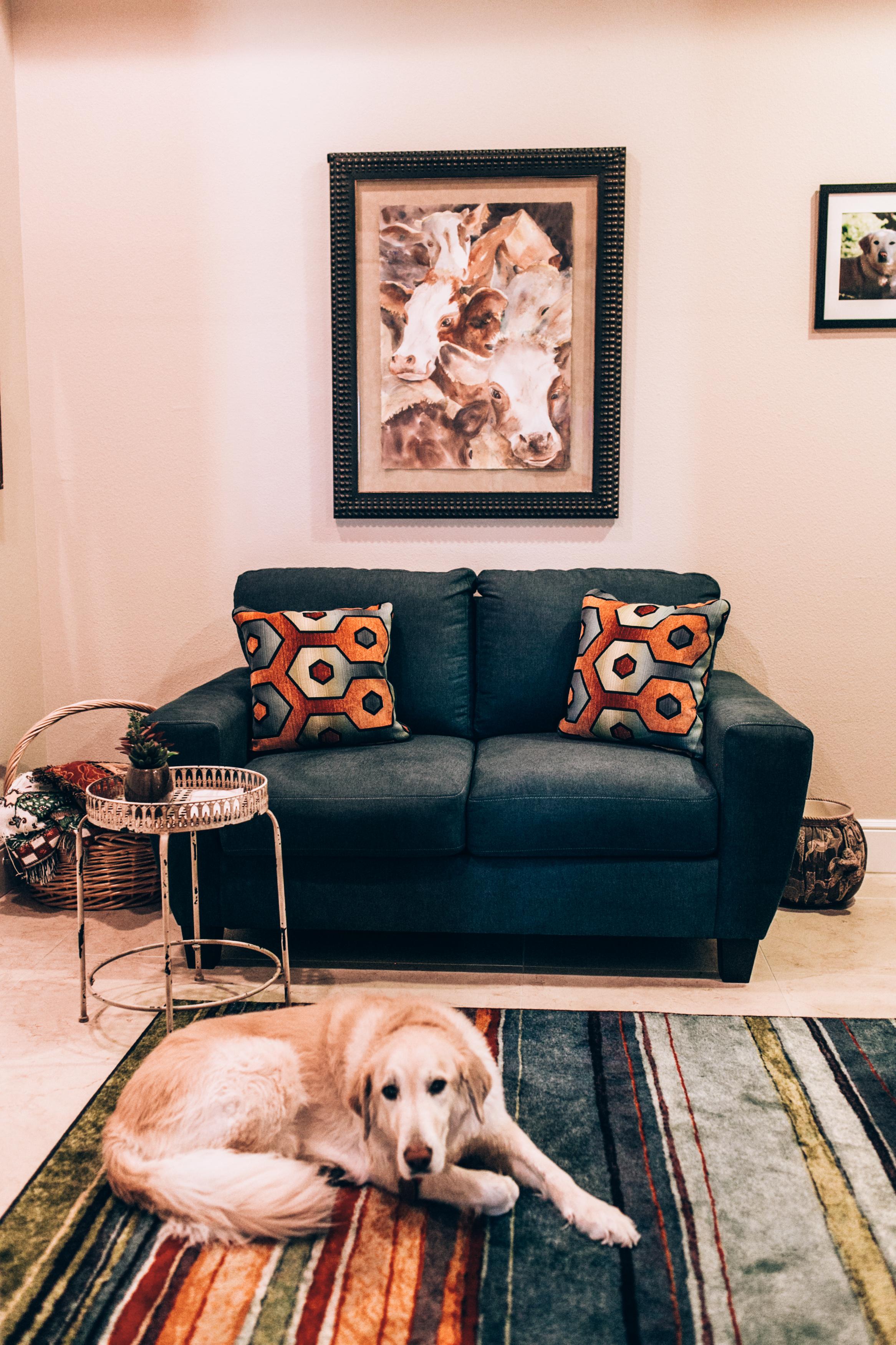 interior-design-home-decorating-347.jpg