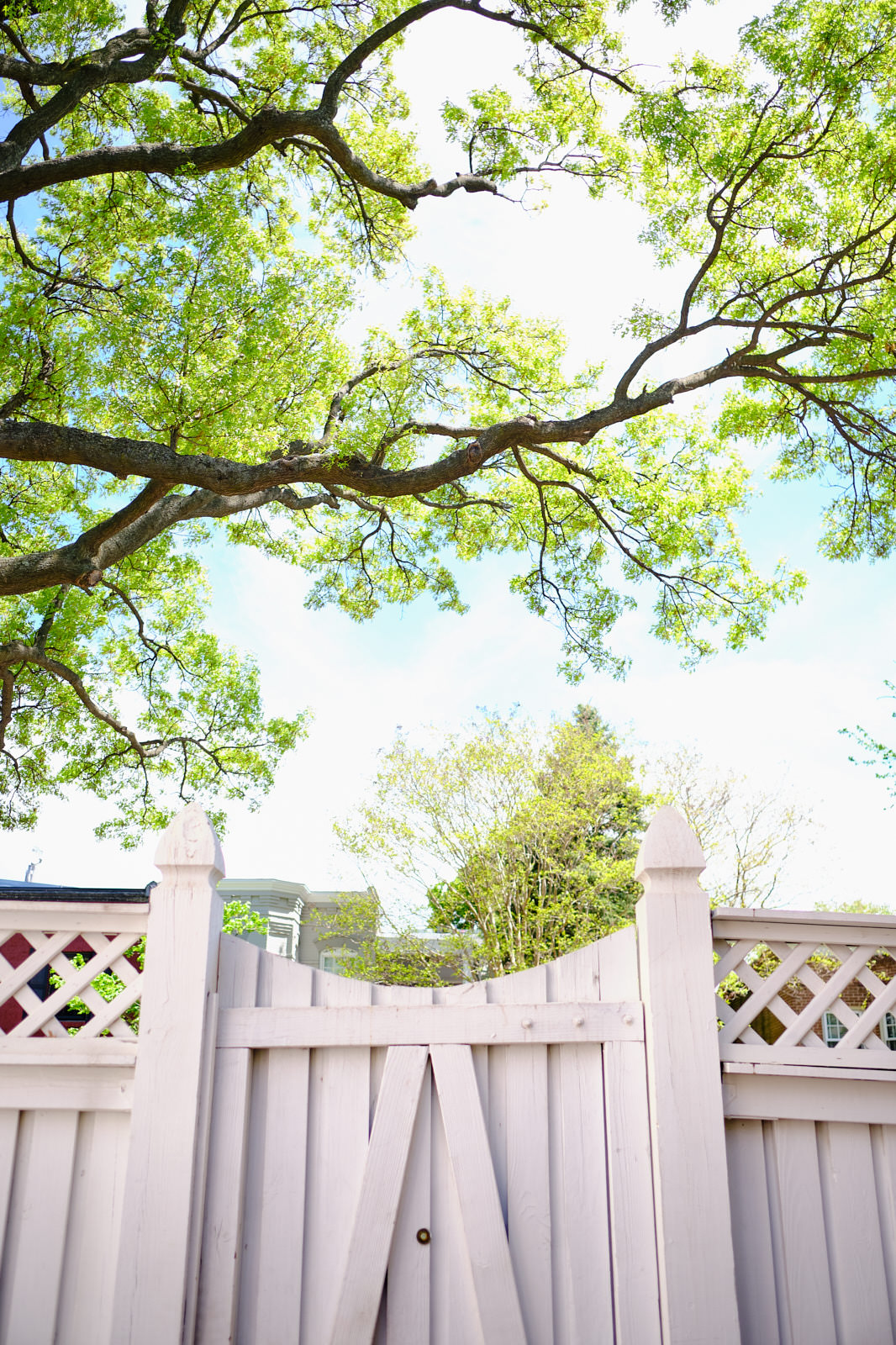 Photoguzman_SummerInTheCity_003.jpg