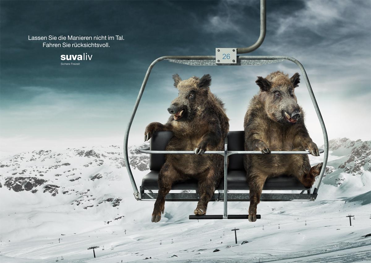 Wildschweine_big.jpg