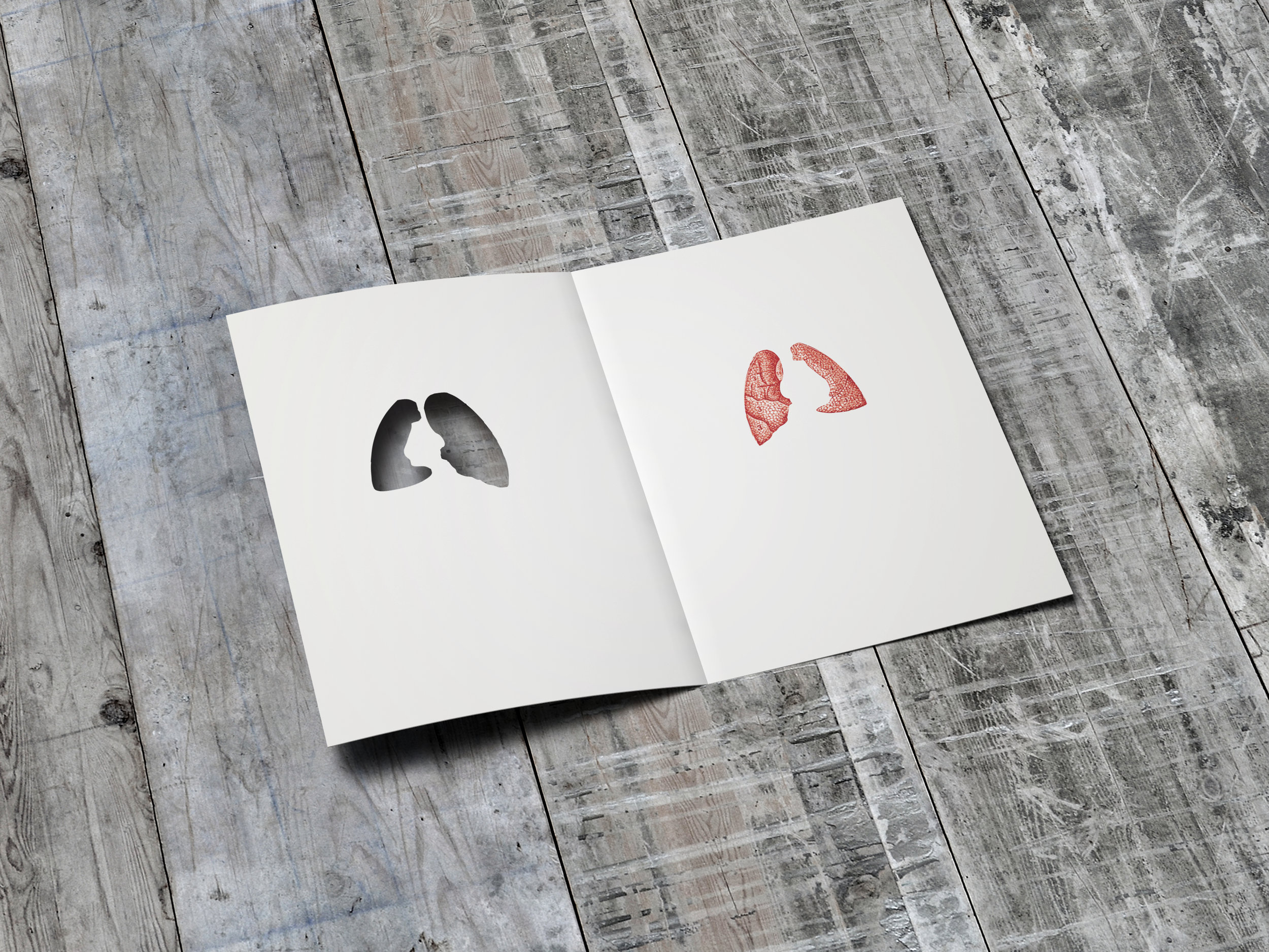 Lungs_010.jpg
