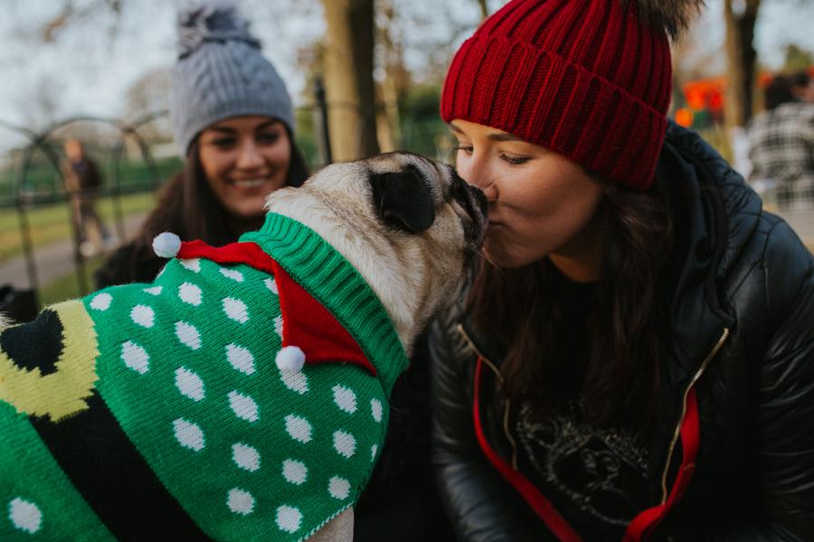 christmas_pug_meeting_liviafigueiredo.com_69.jpg