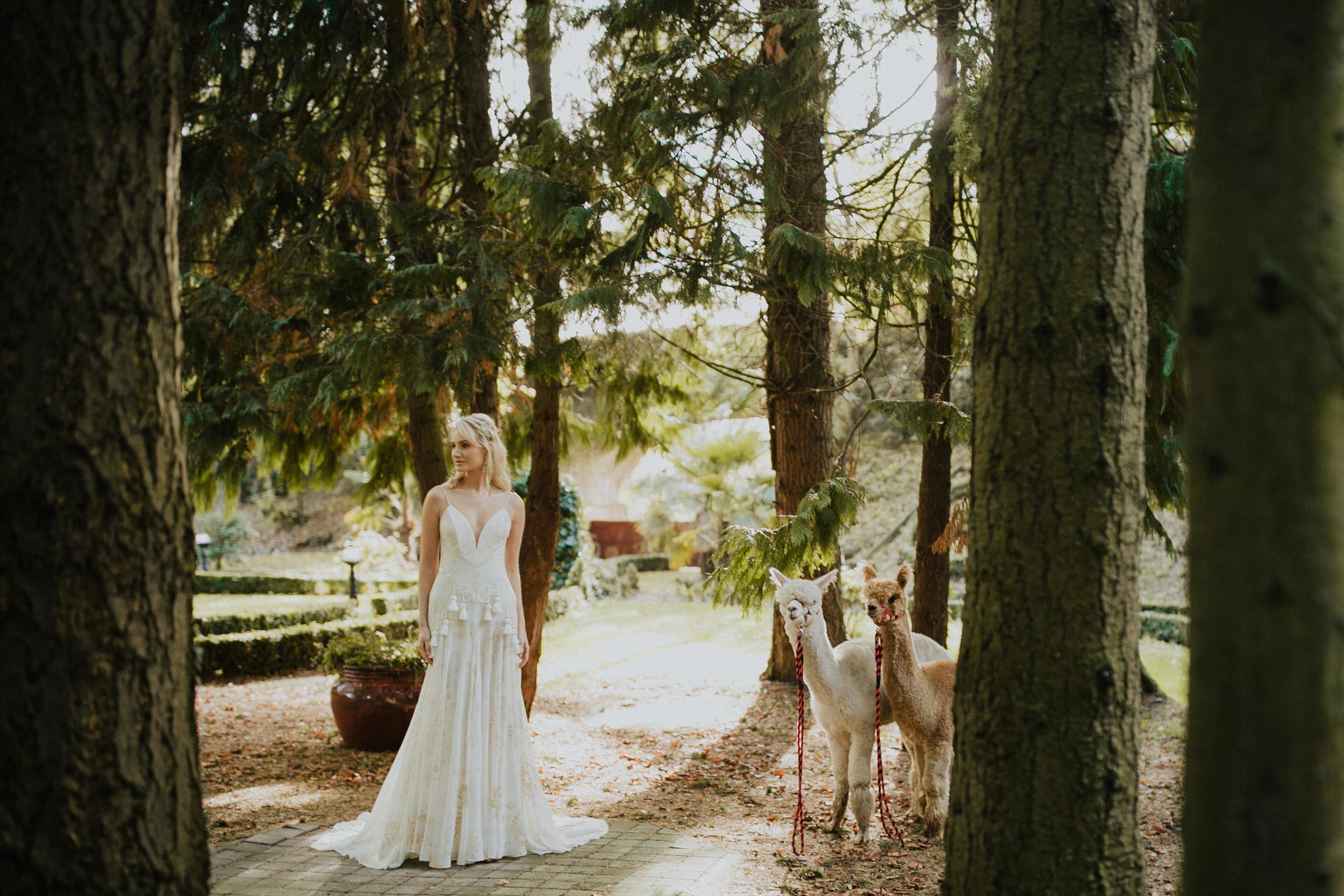 boho_wedding_alpaca_xpose_station_house_livia_figueiredo_photography_13.jpg