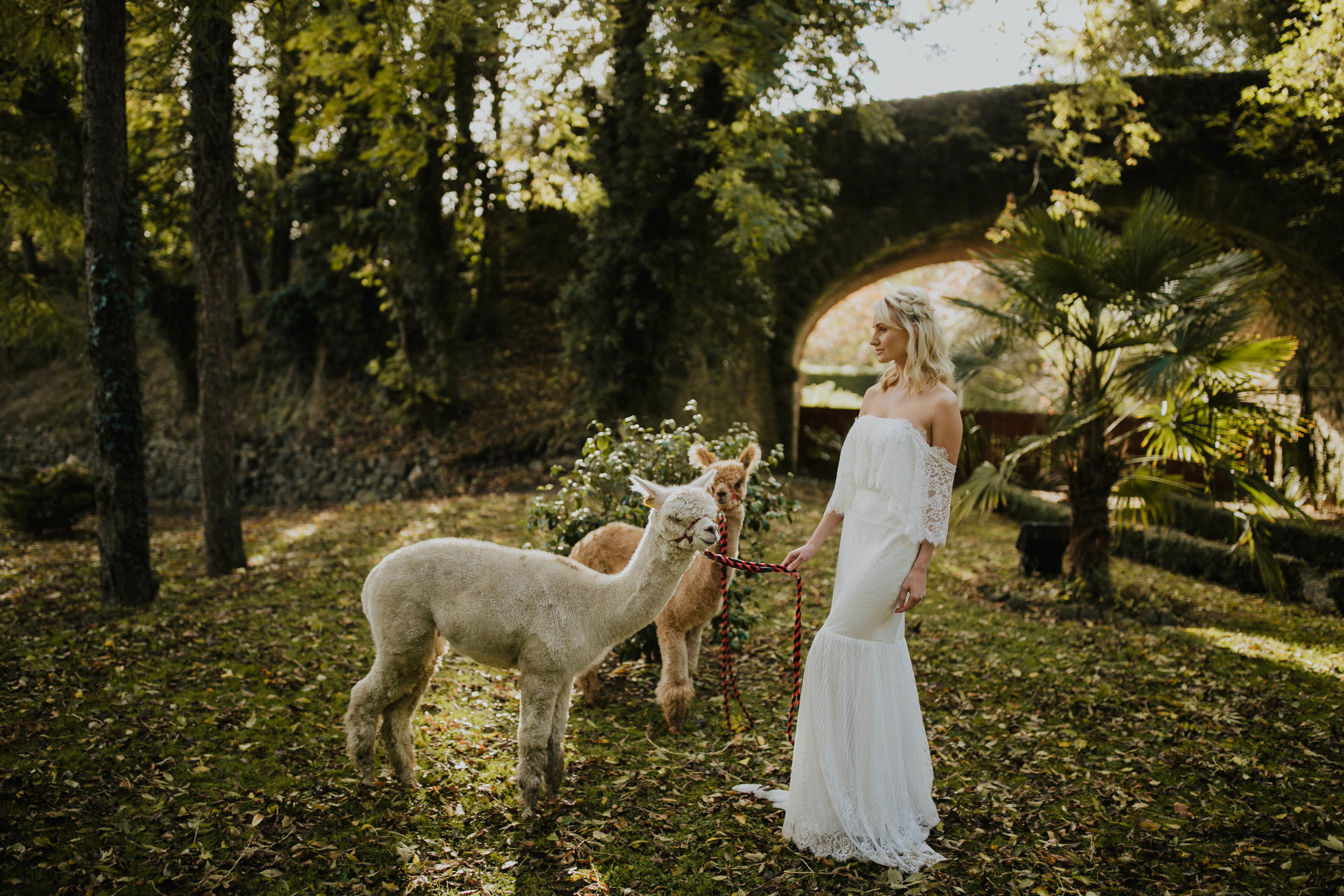 boho_wedding_alpaca_xpose_station_house_livia_figueiredo_photography_06.jpg