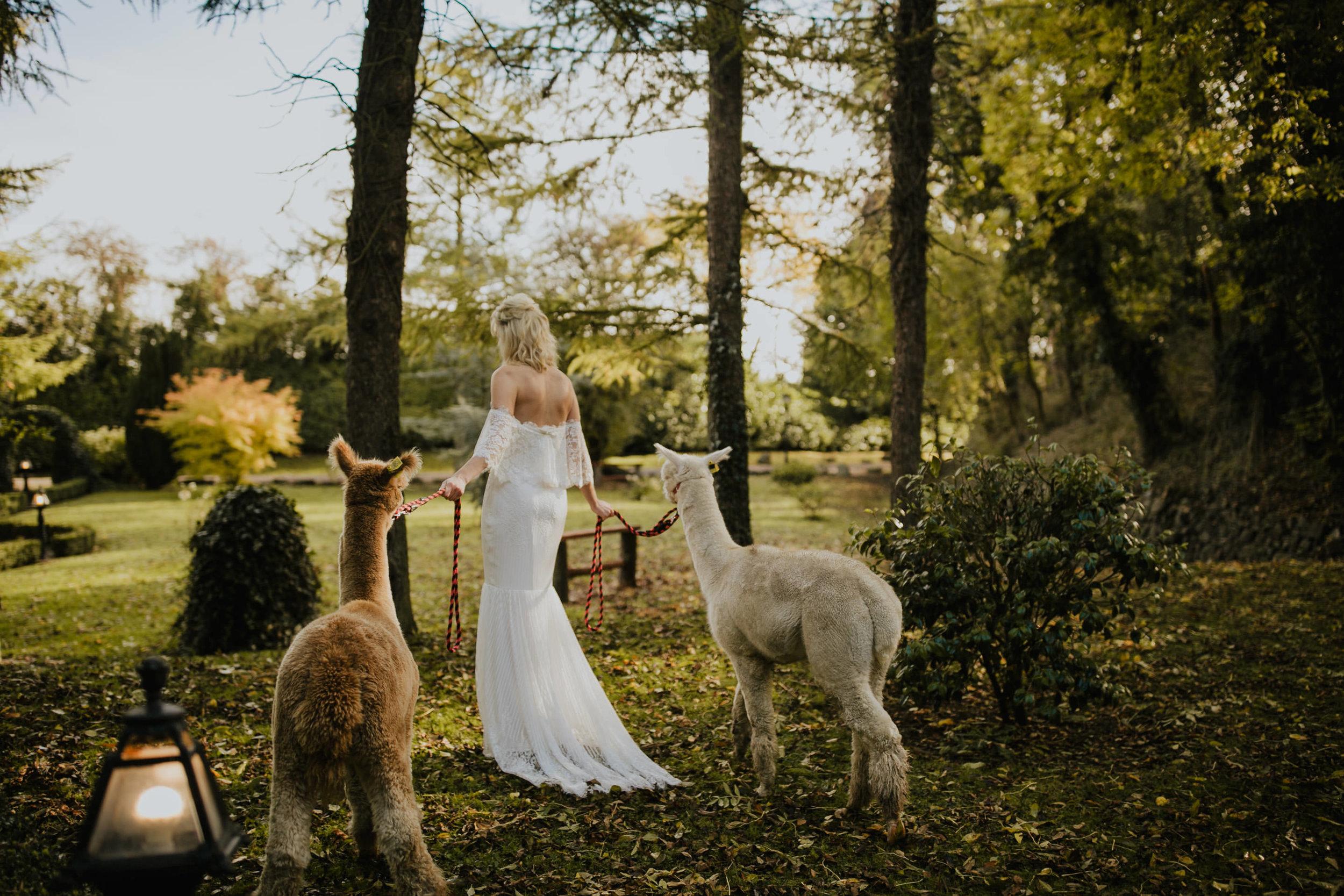 boho_wedding_alpaca_xpose_station_house_livia_figueiredo_photography_08.jpg