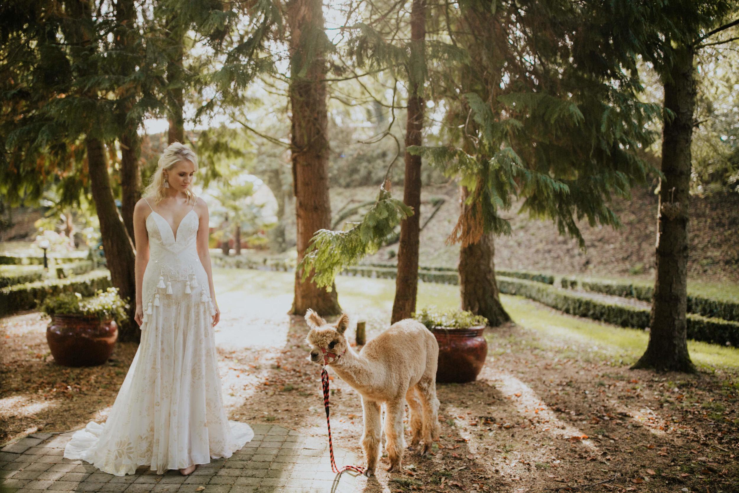 boho_wedding_alpaca_xpose_station_house_livia_figueiredo_photography_14.jpg