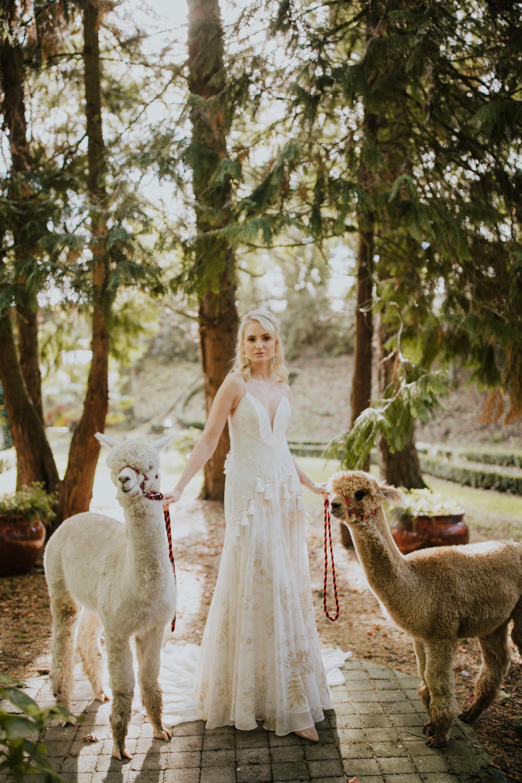 boho_wedding_alpaca_xpose_station_house_livia_figueiredo_photography_17.jpg
