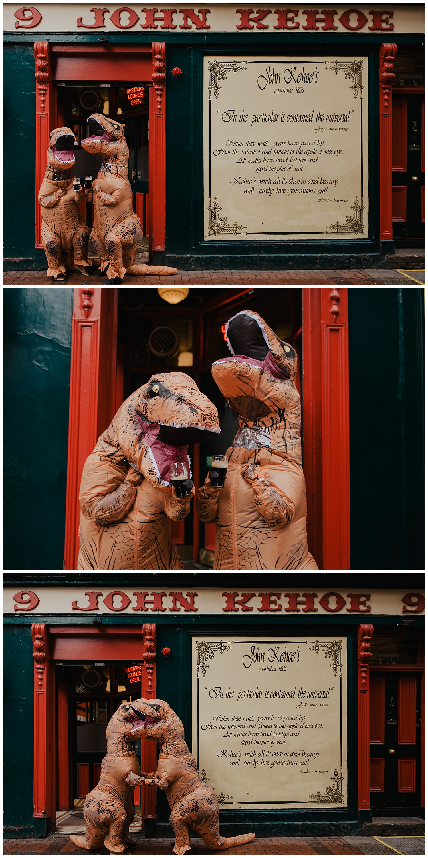 m-m-t-rex-engagement-session-wedding-photographer-dublin-ireland-livia-figueiredo-50.jpg