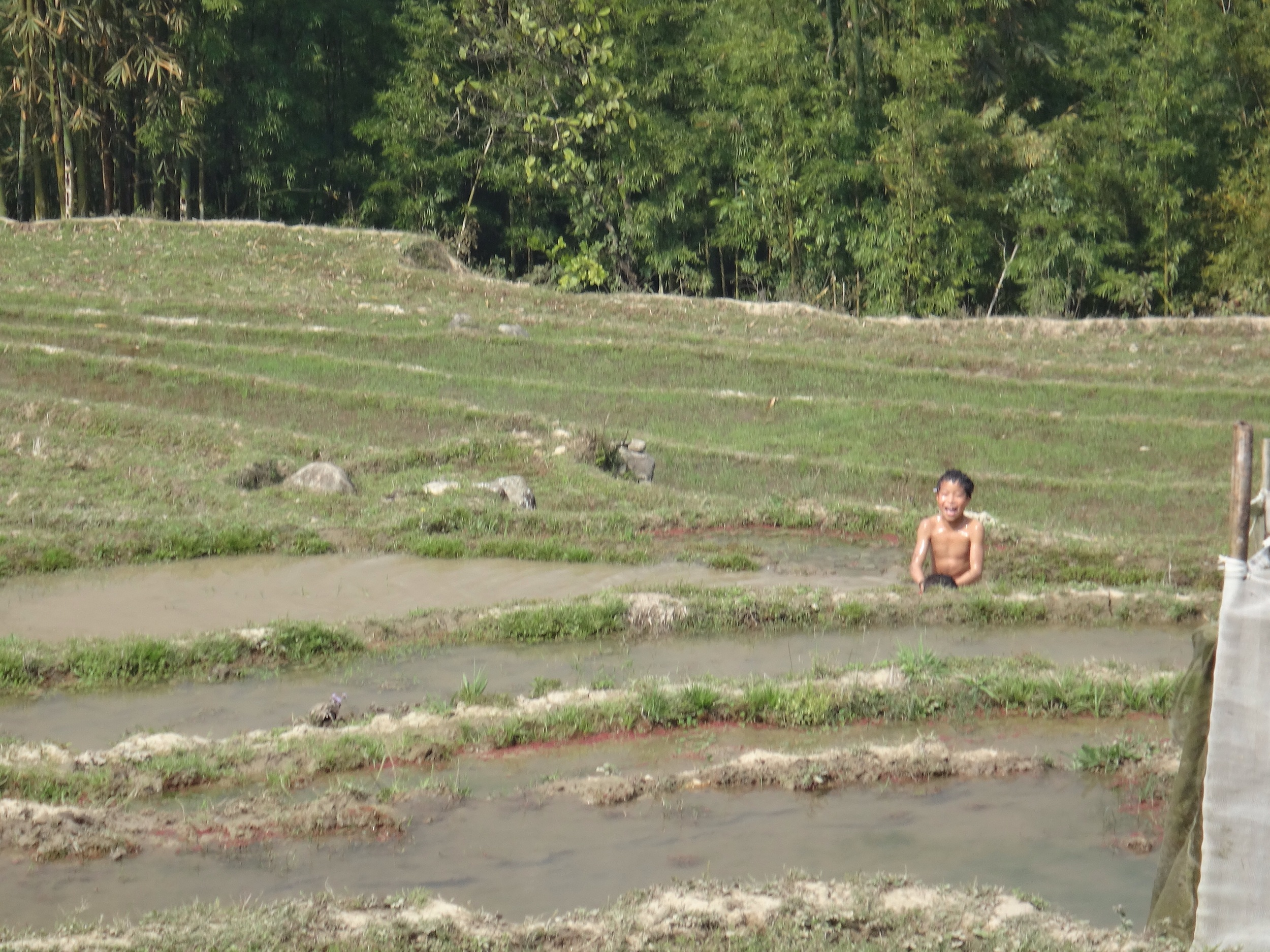 Boys playing in the rice paddies -- planting time in the mountains, where they get one crop a year (central Vietnam has 2 crops and southern Vietnam has 3), was still a couple of weeks away.